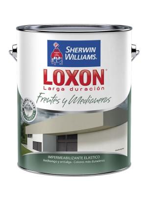 LOXON LD FRENTES Y MEDIANERAS BLANCO x 10